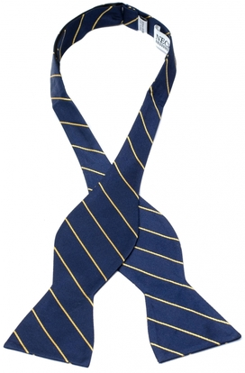 Bergamo Stipes Navy Self Tie