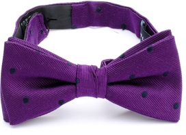 Bow Tie Dots Purple 33408-600